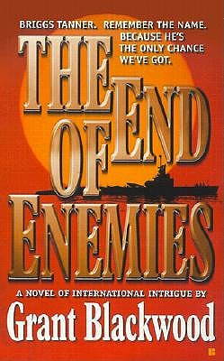 Image for The End of Enemies (Briggs Tanner Novels)