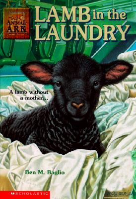 Image for Lamb in the Laundry (Animal Ark Series #12)