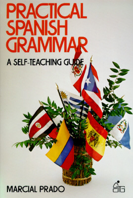 Image for Practical Spanish Grammar: A Self-Teaching Guide