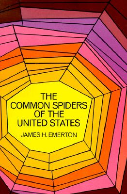 Image for Common Spiders of the United States