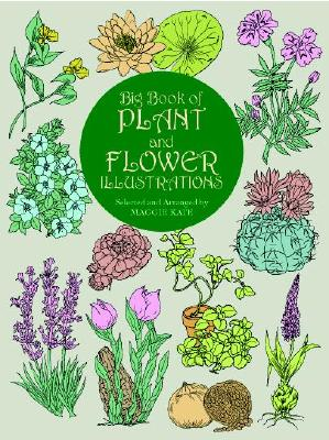 Image for Big Book of Plant and Flower Illustrations (Dover Pictorial Archive)