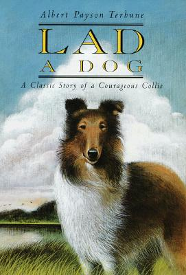 Image for Lad A Dog