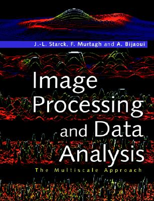 Image for Image Processing and Data Analysis: The Multiscale Approach