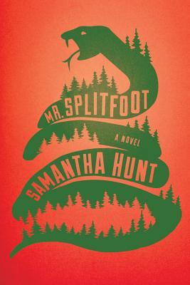 Image for Mr. Splitfoot A Novel