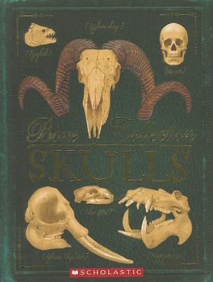Image for Bone Collection: Skulls