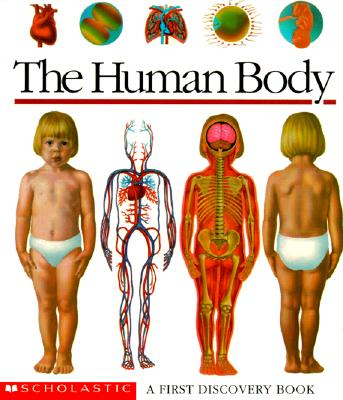 Image for The Human Body: A First Discovery Book