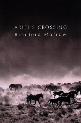 Image for Ariel's Crossing