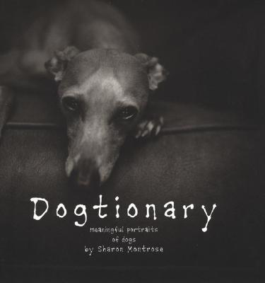 Image for Dogtionary: Meaningful Portraits of Dogs
