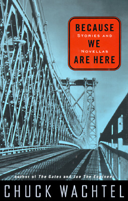 Image for Because We Are Here: Stories and Novellas