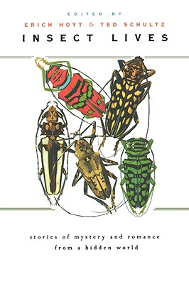 Image for Insect Lives: Stories of Mystery and Romance from a Hidden World