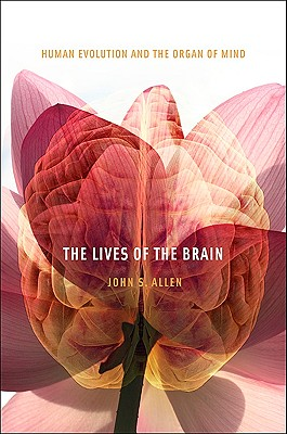 The Lives of the Brain: Human Evolution and the Organ of Mind, Allen, John S.