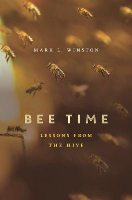 Image for Bee Time: Lessons from the Hive