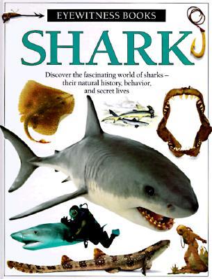 Shark (Eyewitness Books), Macquitty, Miranda