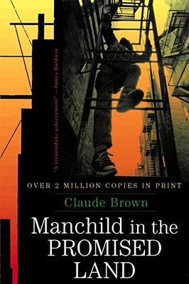 Image for Manchild in the Promised Land