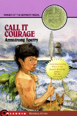 Image for Call It Courage