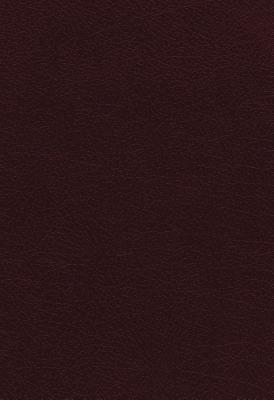 Image for NKJV, The Vines Expository Bible, Bonded Leather, Burgundy: A Guided Journey Through the Scriptures with Pastor Jerry Vines