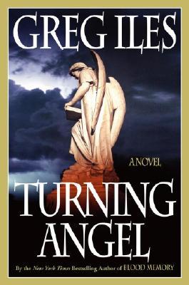 Image for TURNING ANGEL  A Novel