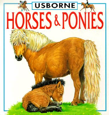 Image for Horses & Ponies (Board Book)