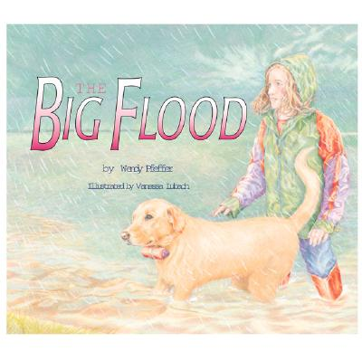 Image for The Big Flood
