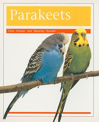 Image for Parakeets