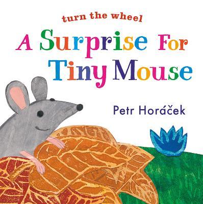 A Surprise for Tiny Mouse, Horacek, Petr