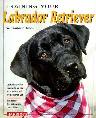 Image for Training Your Labrador Retriever