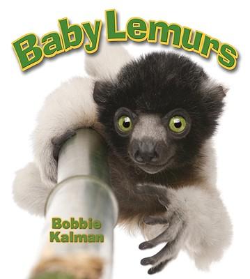 Baby Lemurs (It's Fun to Learn About Baby Animals), Kalman, Bobbie