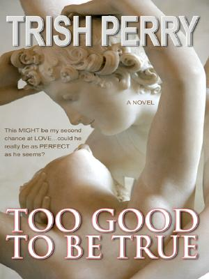 Too Good to Be True (Thorndike Press Large Print Christian Fiction), Trish Perry