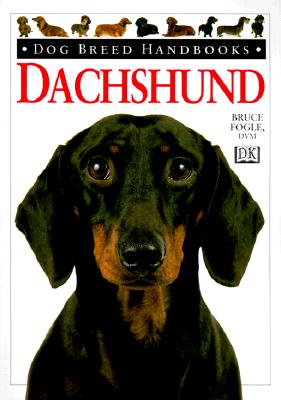 Image for Dachshund