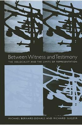 Image for Between Witness and Testimony: The Holocaust and the Limits of Representation