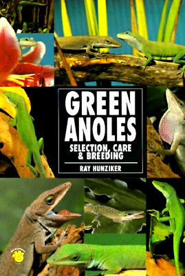 The Guide to Owning a Green Anole, Ray Hunziker