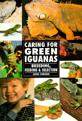 Image for CARING FOR GREEN IGUANAS BREEDING FEEDING AND SELECTION