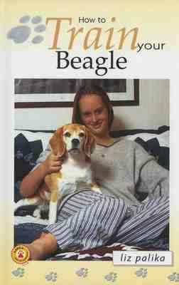 Image for How to Train Your Beagle (How To...(T.F.H. Publications))