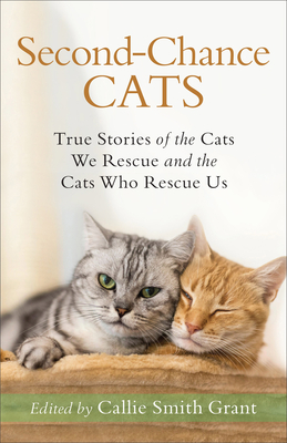Image for Second-Chance Cats: True Stories of the Cats We Rescue and the Cats Who Rescue Us
