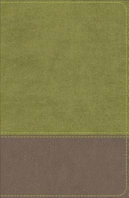 Image for KJV Study Bible for Boys Olive/Brown LeatherTouch