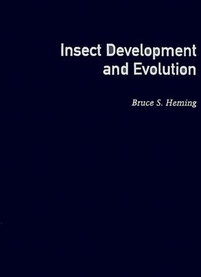 Image for Insect Development and Evolution (Comstock Books)