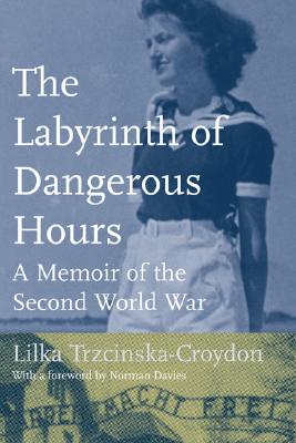 Image for Labyrinth Of Dangerous Hours: A Memoir Of The Second World War, The