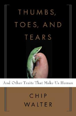 Image for THUMBS, TOES, AND TEARS: AND OTHER TRAITS THAT MAKE US HUMAN