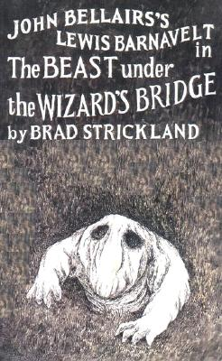Image for The Beast Under the Wizard's Bridge