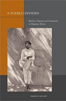 Image for A Pueblo Divided: Business, Property, and Community in Papantla, Mexico