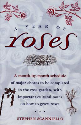 Image for A Year of Roses