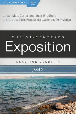Image for Exalting Jesus in John (Christ-Centered Exposition Commentary)