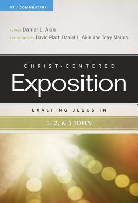 Image for Exalting Jesus in 1,2,3 John (Christ-Centered Exposition Commentary)
