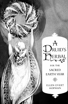 SPIRIT HEALING NATIVE AMERIAN MAGIC & HEALING, ATWOOD, MARY DEAN