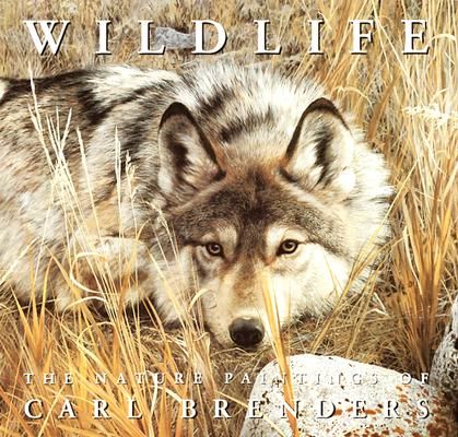 Image for Wildlife: The Nature Paintings of Carl Brenders