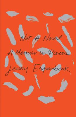 Image for Not a Novel: A Memoir in Pieces