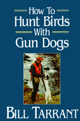 Image for How to Hunt Birds With Gun Dogs