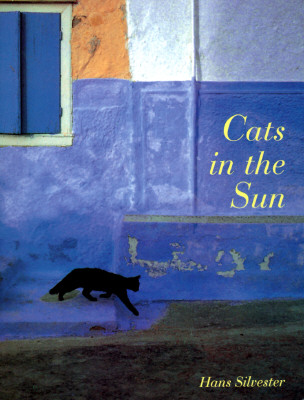 Image for CATS IN THE SUN
