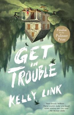 Image for Get in Trouble: Stories