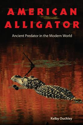AMERICAN ALLIGATOR: ANCIENT PREDATOR IN THE MODERN WORLD, OUCHLEY, KELBY